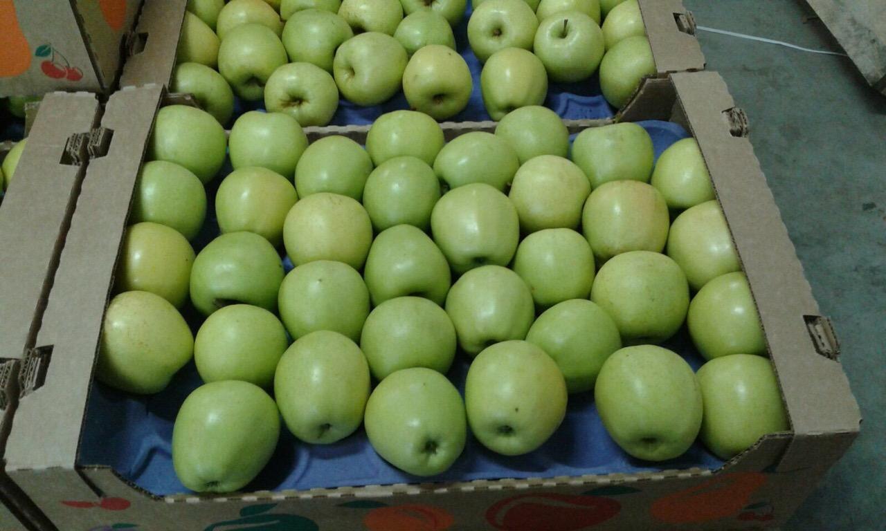 Выращивание яблок в 80